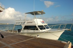 Diving---Tortuga-Divers-Boats
