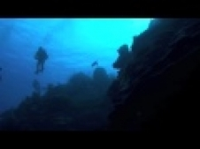 Wall Dive, East End, Tortuga Divers